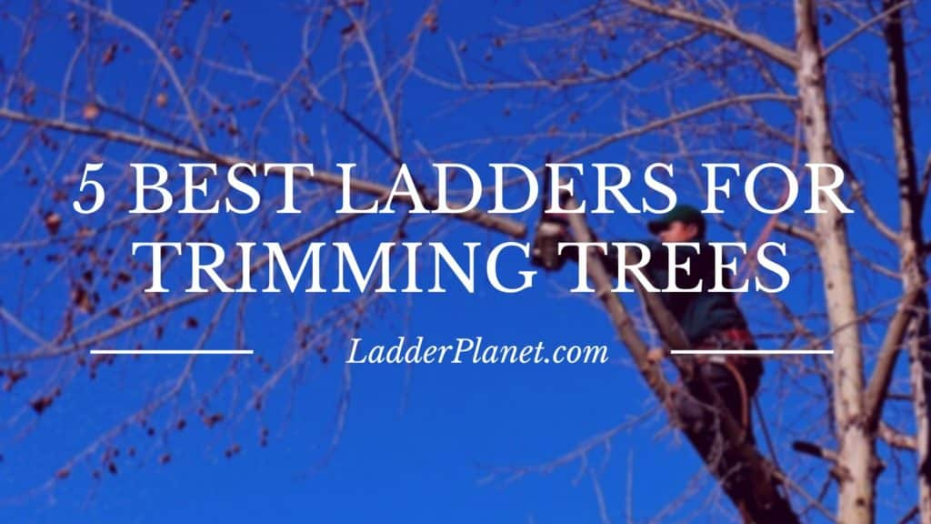 5 Best Ladders For Trimming Trees