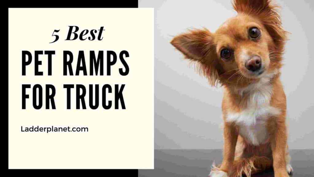 Pet Ramps For Truck